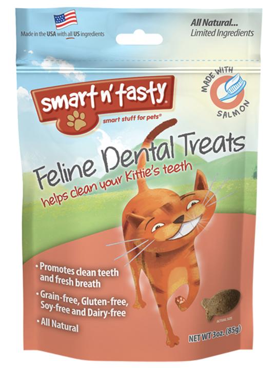 pet dental care in portland